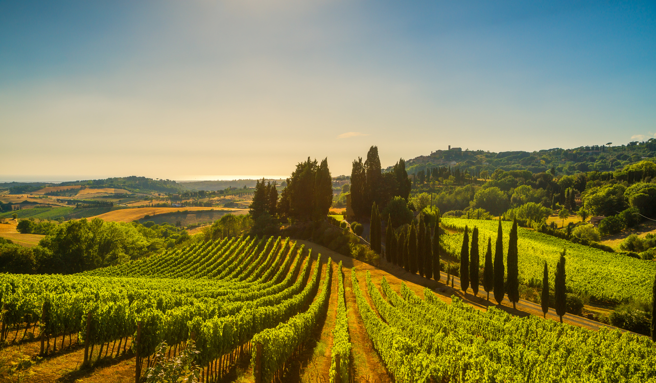Italy's First All-Women Vineyard | Italian Sons and Daughters of America